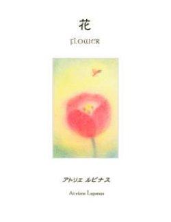 画像1: アトリエ・ルピナス絵本 花